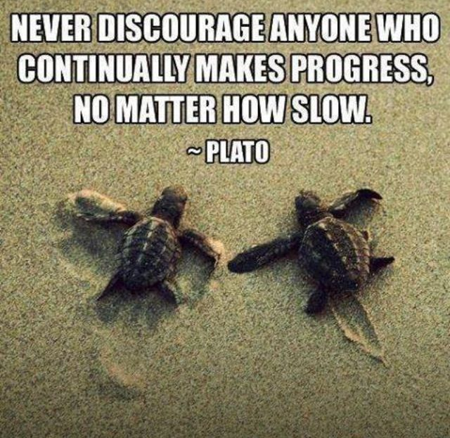 """Very important to remember. """"Never discourage anyone who continually makes progress, no matter how slow"""".  Might be a good idea for a blowup/class poster"""
