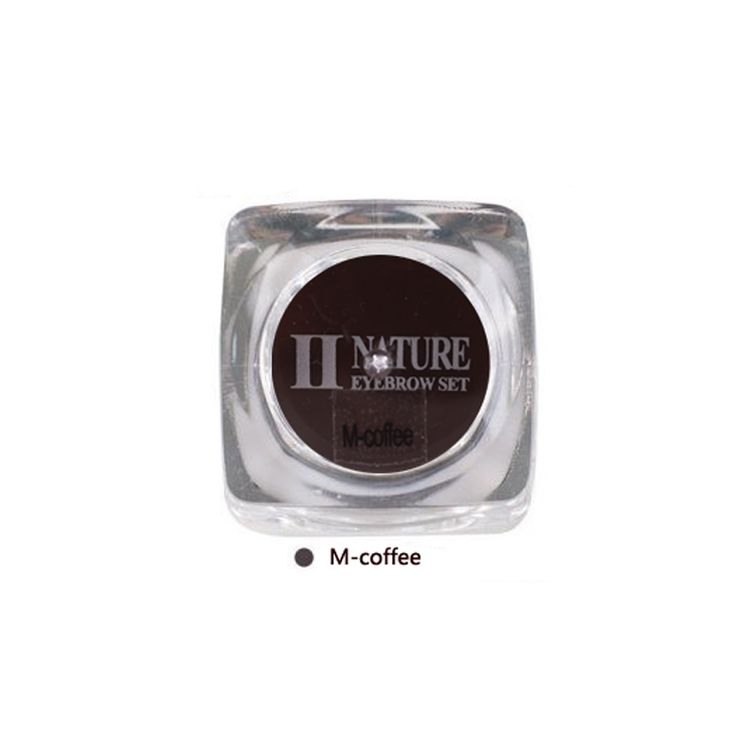 Biomaser PCD Permanent Makeup Pigments Tattoo ink 1pcs/lot Middle coffee Color For Eyebrow Lip make up Microblading