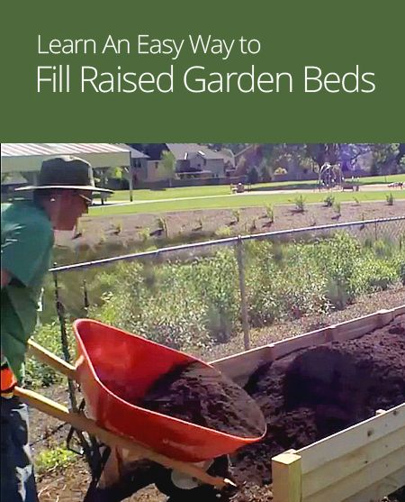 Easy way to fill raised garden beds gardening lasagna gardening raised bed pinterest for How to fill a raised garden bed