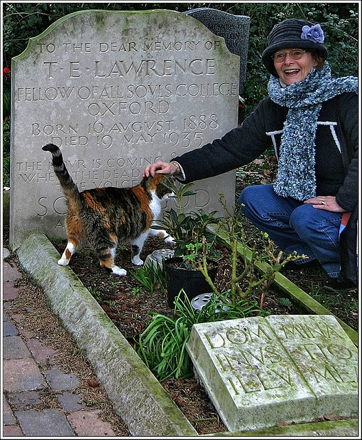 "This lovely cat is renowned for patrolling the grave of T.E. Lawrence in Moreton, Dorset; A.k.a. 'Lawrence of Arabia'. T.E. Lawrence was a British soldier and author.  ""Seven Pillars of Wisdom; a Triumph"" is regarded as a classic of his work."