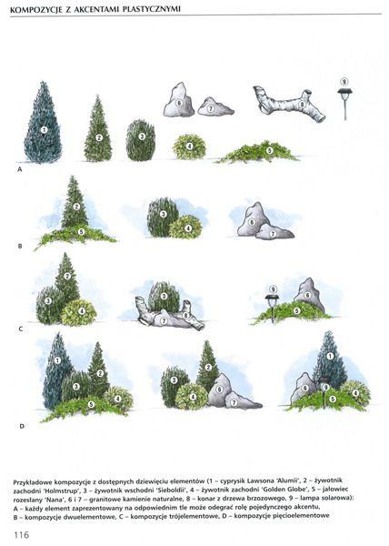 камни хвойники (428x600, 58Kb)