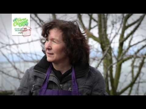 In deze aflevering van Verse Oogst op Locatie is kokkin Monique Stekelenburg op bezoek bij Kwekerij van Luijk en Zn. Op dit Westlandse familiebedrijf worden sinds 1999 heerlijke aubergines geteeld.