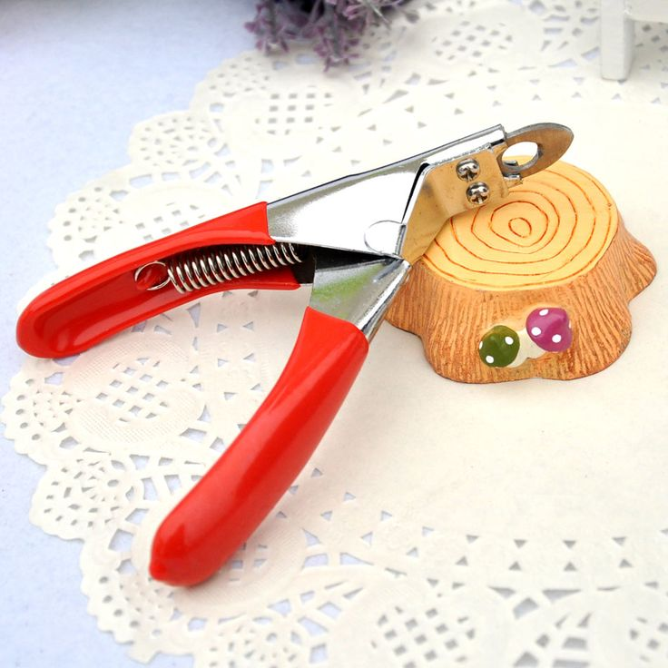 17 best ideas about nail clippers on pinterest truth