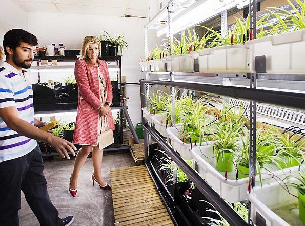 7-6-2017 Queen Maxima visited the Plant-e in Wageningen