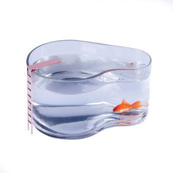 Aquarium Fish Pool - Doiy