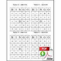 Imprimir Cartelas De Bingo - Arquivo Digital Download