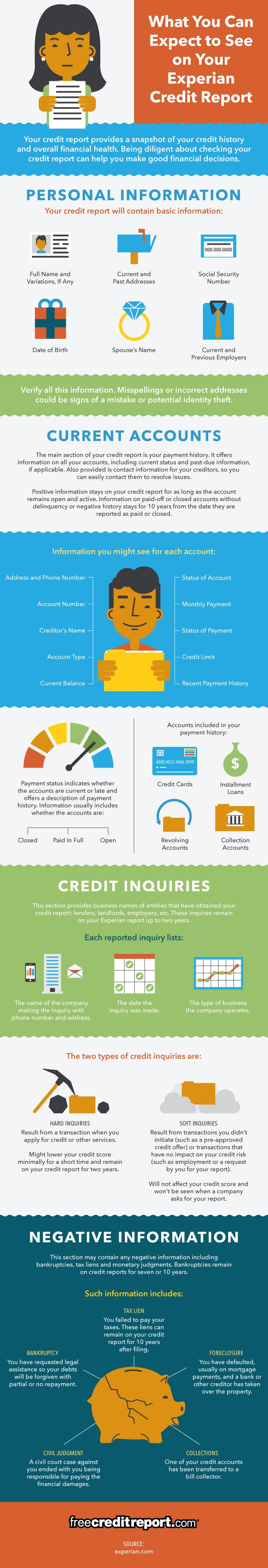 What You Can Expect to See on Your Experian Credit Report | Finance | Free Credit Report [Premium+ Infographic]