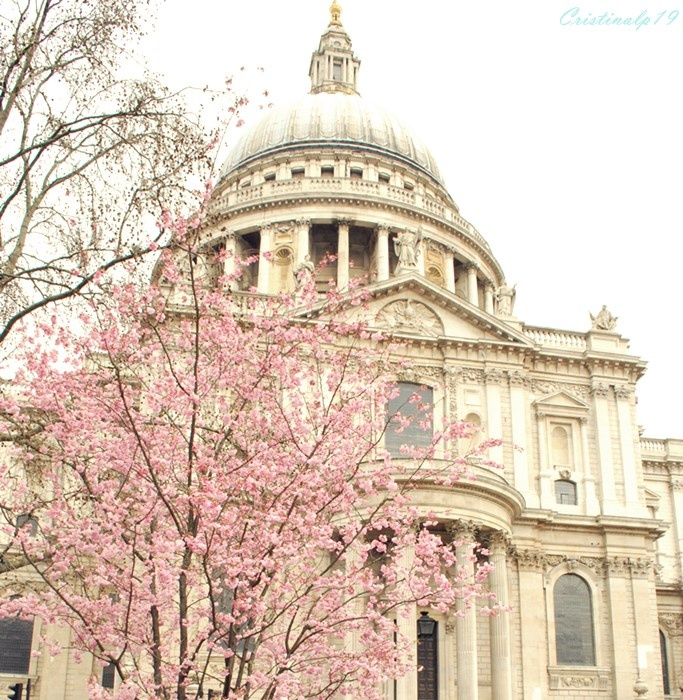 #Londres #London #Travel #Viaje #St Paul's cathedral