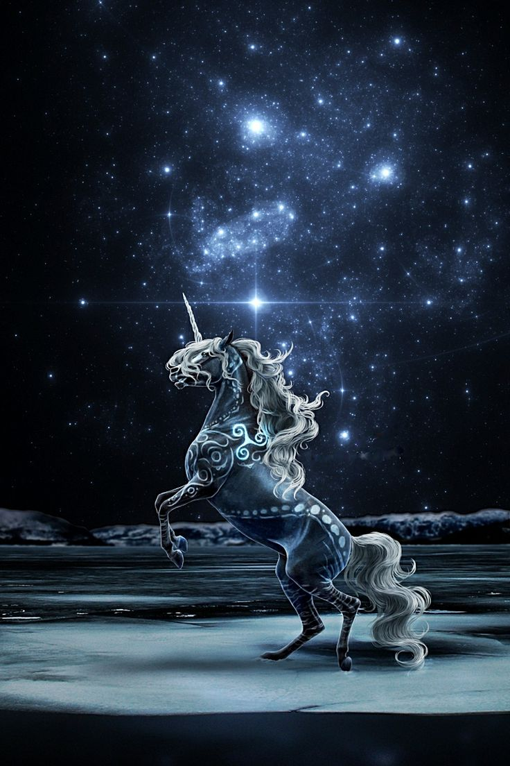 127 best unicorns u0026 dragons images on pinterest fantasy