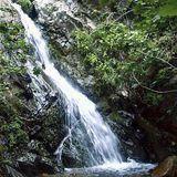 Holy Jim Falls Trail - Orange County, California | AllTrails.com