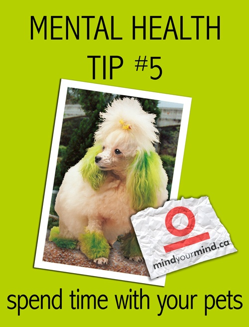 Mental Health Tip #5: Spend time with your pets