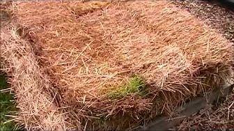Straw Bale Gardening: Start to Finish - YouTube
