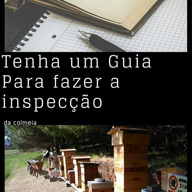 #apiculturaeficiente  #Regram via @apicosta