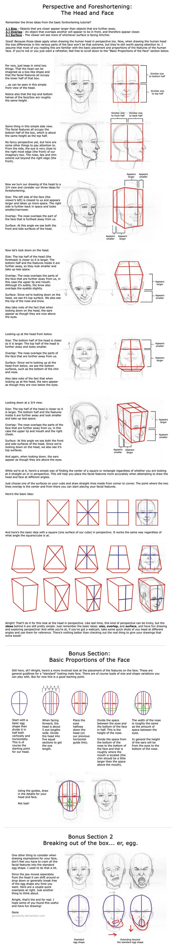 Tues 4: Head in Perspective by genekelly.deviantart.com on @deviantART