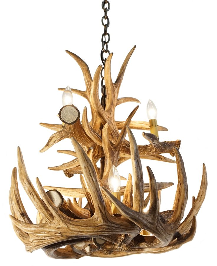 13 best lustre a cornes images on pinterest pendant lighting whitetail deer 12 large antler chandelier is a new addition that adds the perfect touch of aloadofball Images