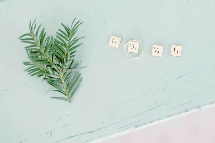 Pines and Love scrabble , old wood pastel lavish blue in paris, engagement pictures