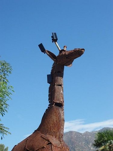 1000 Images About Disguised Cell Towers On Pinterest A
