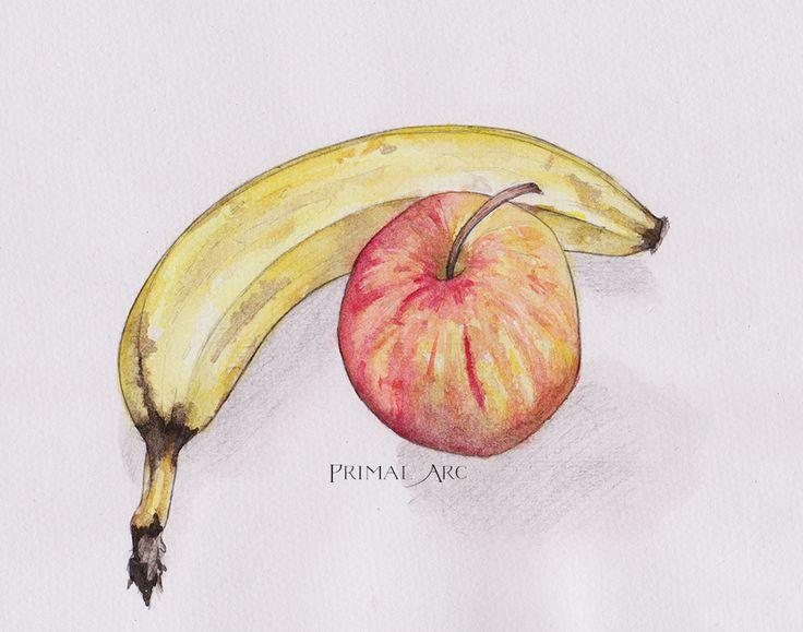 'Fruit Study', watercolour. www.primalarc.com