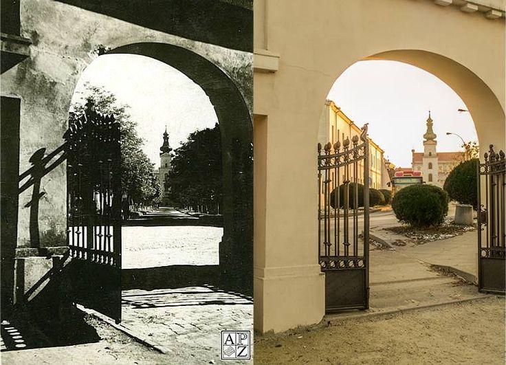 Brama parkowa, w głębi ul. Akademicka, 1954 r