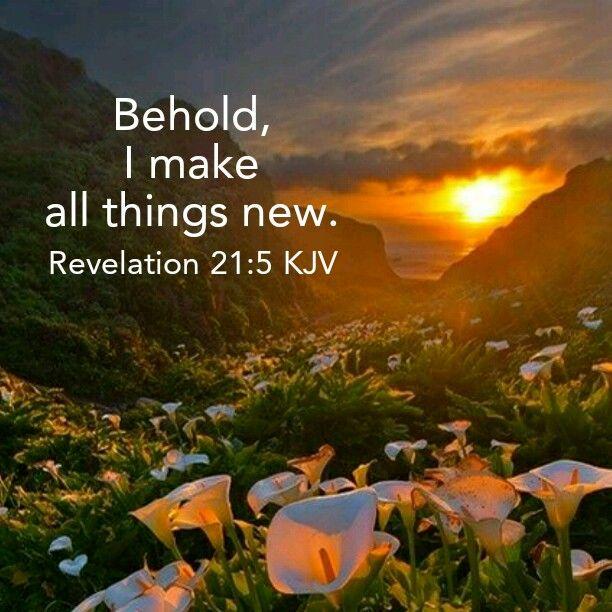 Revelations bible study online