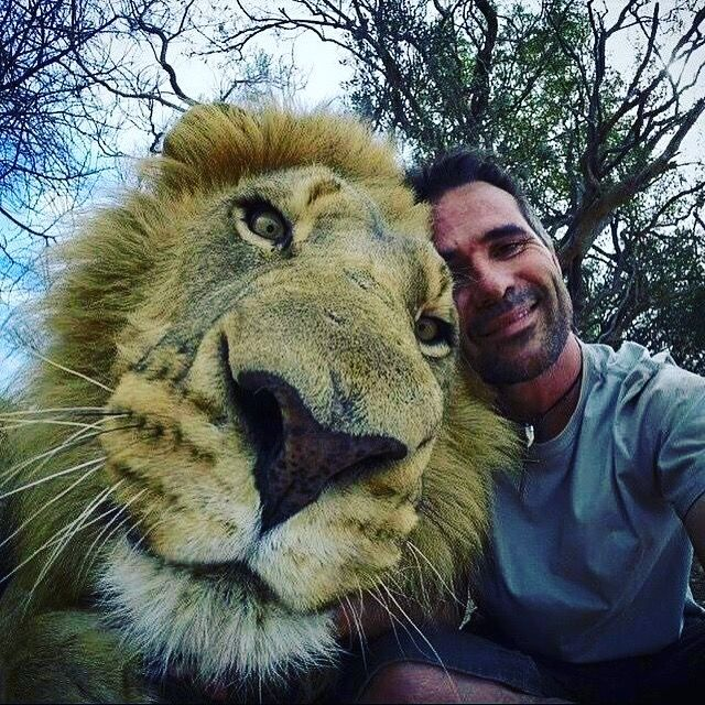 Amazing  Selfie Of Man With His Cat (Pet Lion In Africa).