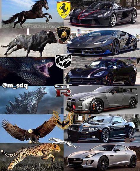 Wählen Sie Ihren Supersportwagen 📥 ☝🏽 DM mich, um zu erfahren, wie ich diese Seite wuchs 😄 😄 …   – Auto's