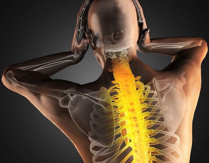 Здоровье позвоночника. Избавление от боли в позвоночнике