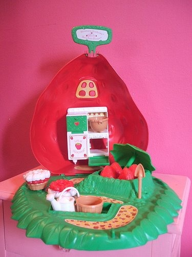 The Strawberry Shortcake Bake Shoppe. It was a big strawberry that opened up and had a little kitchen inside, where you could make little pies and cakes.