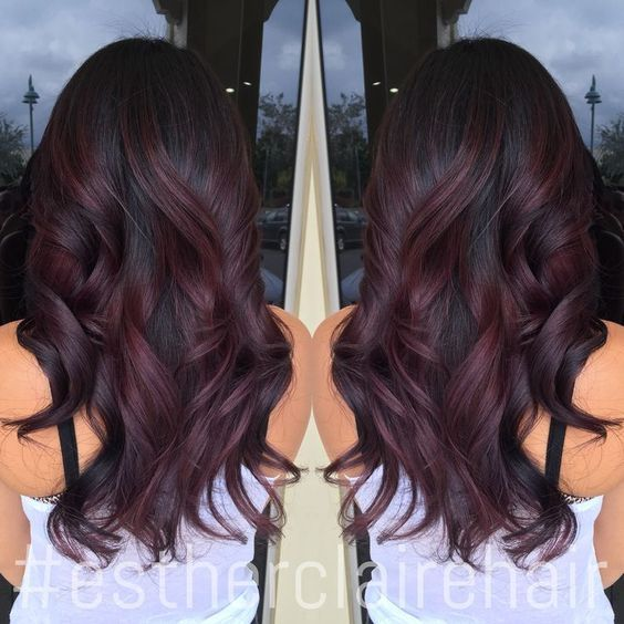 Black Burgundy Hair Color                                                       …