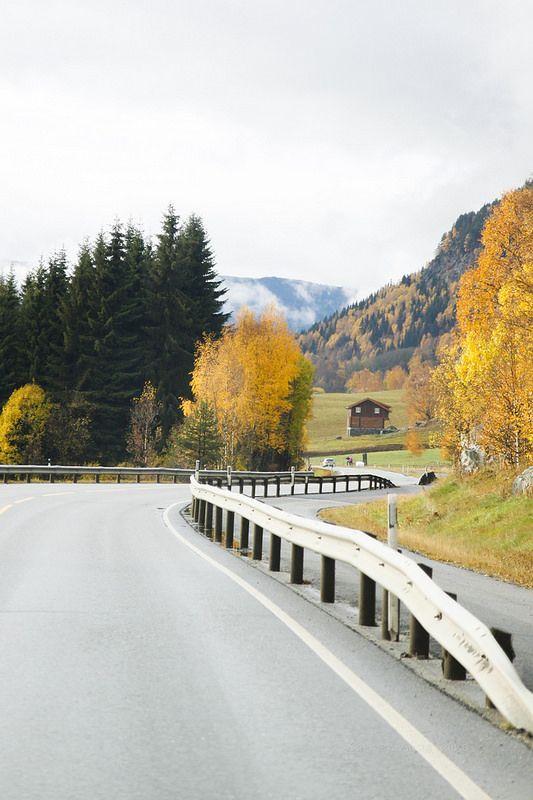Otono en Noruega . the Norwegian Rod
