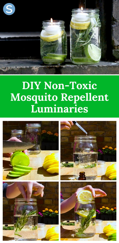 how to get bug repellent ark
