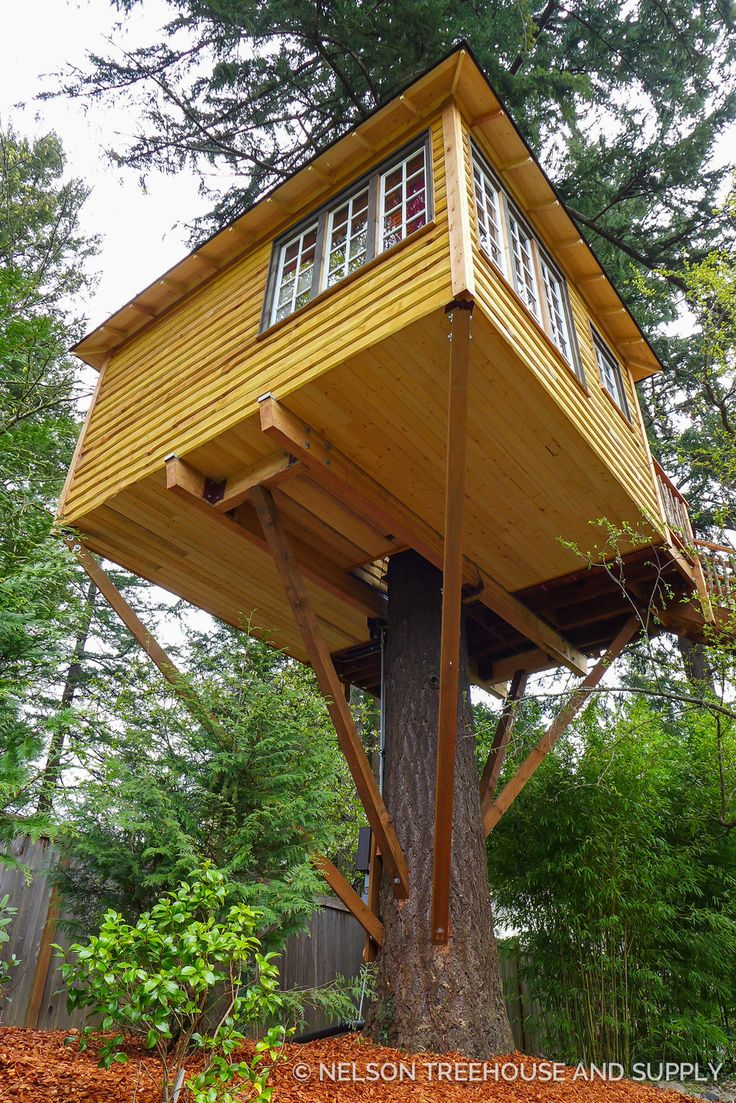 Best 25 treehouses ideas on pinterest awesome tree for Best treehouse designs
