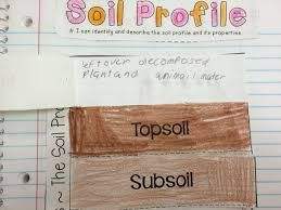 Image result for soil profile activity for 4th grade