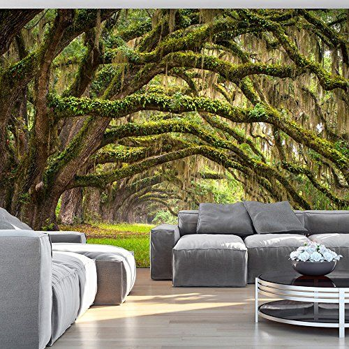 pin von magaly osornio auf deco pinterest fototapete. Black Bedroom Furniture Sets. Home Design Ideas