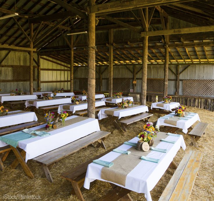Top 29 ideas about farm activities on the farm on for Party barn plans