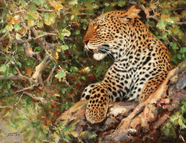 Afrique.  Artiste Eric Forlee