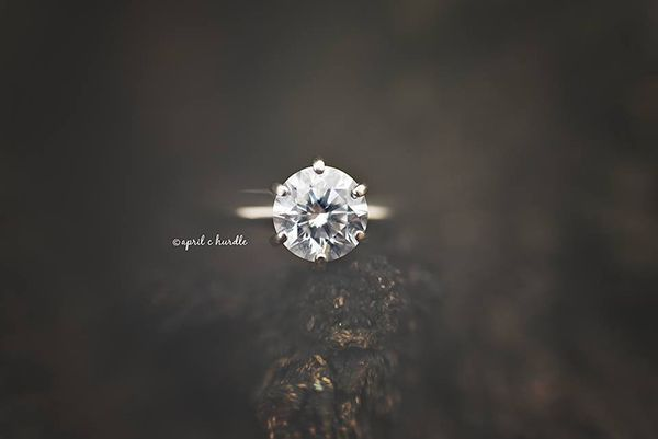 Sparkle | Top Ten | Photo Challenge