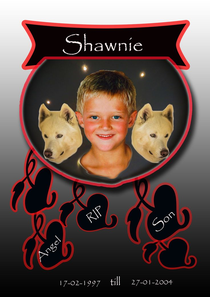 A tribute to my late son Shawn who passed away on the 27th January 2004. #loved #inmemory