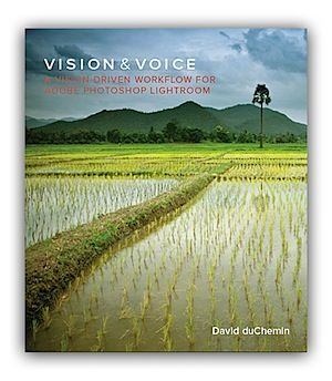 vision and voice by david duchemin