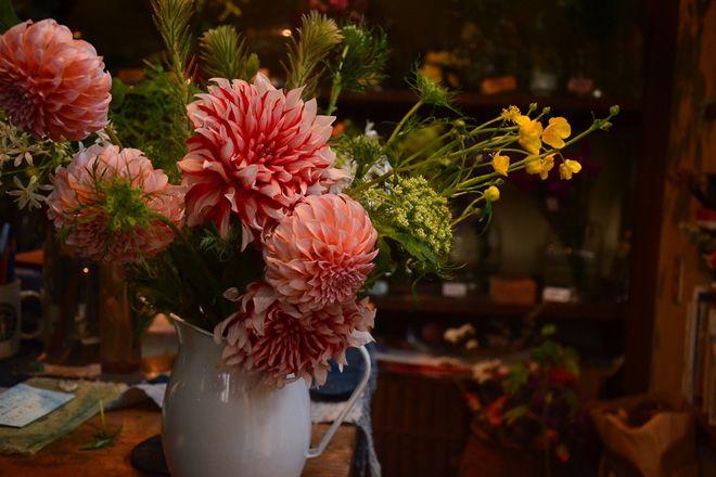 花屋,VEIN,神楽坂,路地裏,一人静,ポップアップショップ