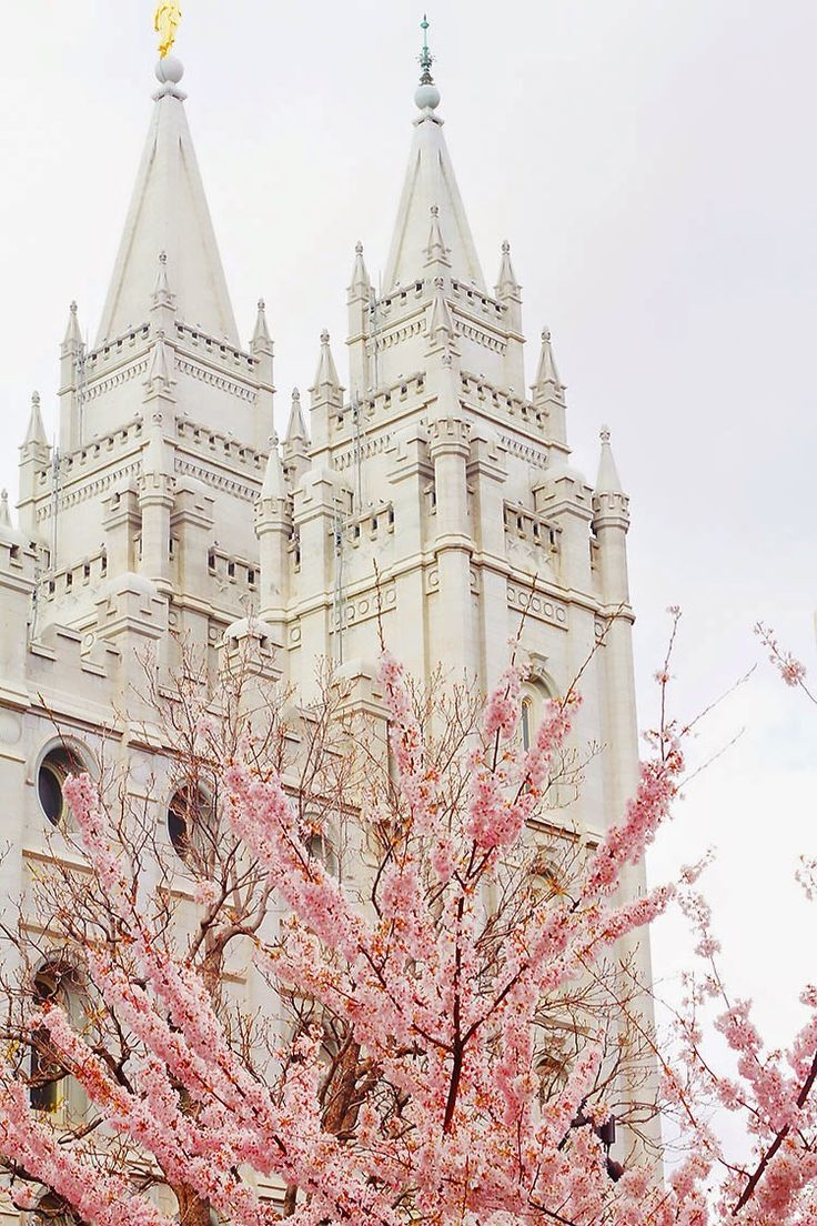 Gorgeous spring blooms surround the most beautiful place in the whole world. Love the Salt Lake Temple
