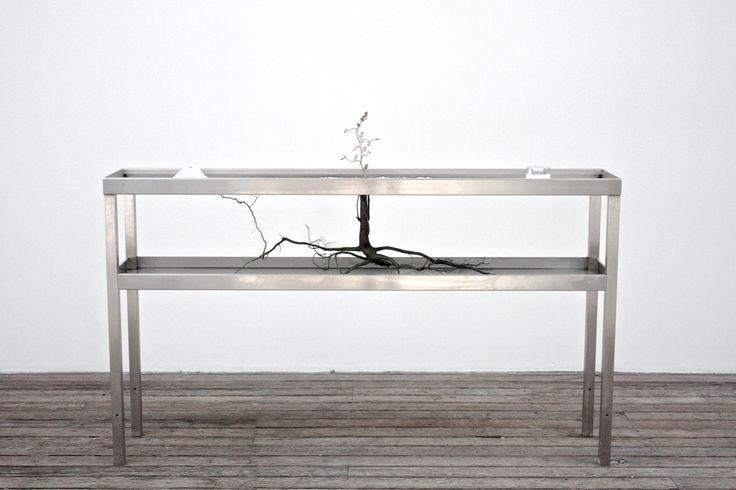 E2 Abzu, Ohlsson / Dit- Cilinn, steel, water, ink, cat litter, earth, roots, jar, buds, plastic, 105x110x40 cm  .