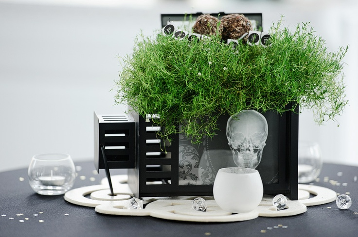 Plant inside IKEA lantern (on its side) with clipping of Rollout Wallpaper 'Worth' inside - table centrepiece