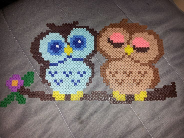 Owls perler beads by RiverTam218 - Pattern: http://www.pinterest.com/pin/374291419003789672/