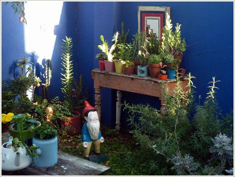 Casa Chaucha. patio!