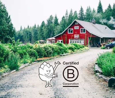 Peresphone Brewing Company is a Farm-to-Beer concept, full interview http://www.whiletheyreonmars.com/2017/02/b-corp-at-peresphone-brewing-company.html craft beer, craft brewery, self succicient, sustainable, bcorp, b the change, organic,