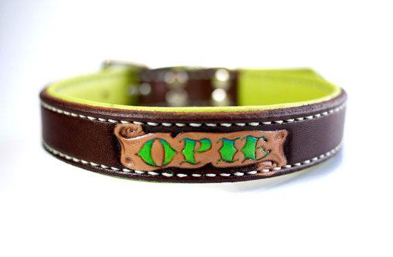 Collar de perro personalizado Collar de perro de por dieselDOGwear