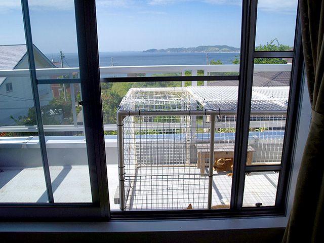 ベランダに猫小屋 After 製作後 猫小屋 小屋diy タワーハウス