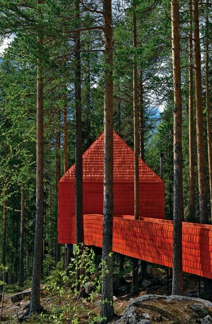 Cabane dans un arbre. Rouge c'est rouge !!