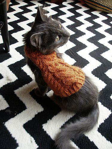 Kittens in sweaters! Ravelry: Log's Turtleneck pattern by Michelle Moross